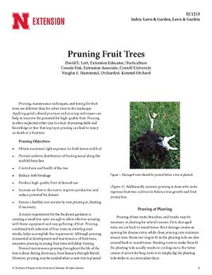Pruning Fruit Trees (EC1233)