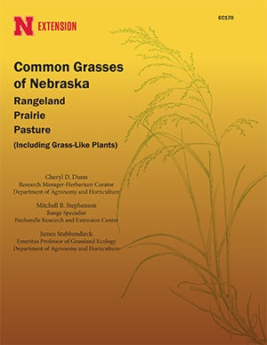 Common Grasses of Nebraska