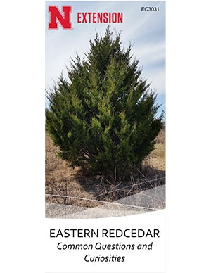 Eastern Redcedar: Common Questions and Curiosities (EC3031)