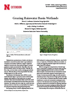 Grazing Rainwater Basin Wetlands