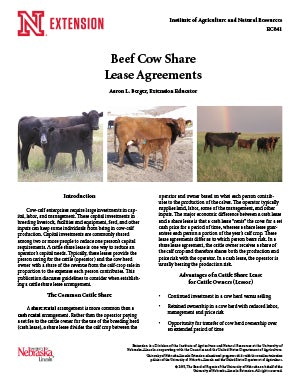 Beef Cow Share Lease Agreements