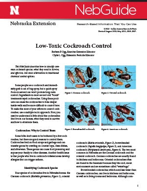 Low Toxic Cockroach Control
