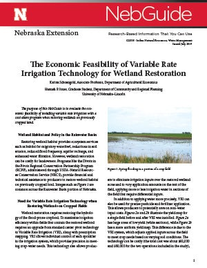 The Economic Feasibility of Variable Rate Irrigation Technology for Wetland Restoration